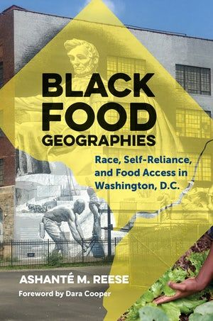 Cover art of Black Food Geographies