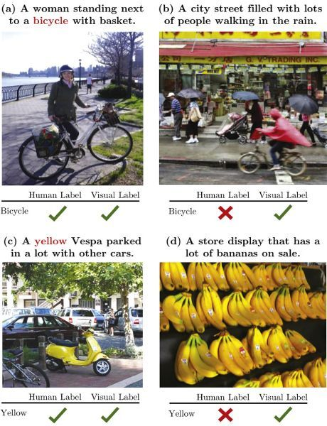 """A collage of four smaller images that come from a research paper about natural language processing. Each image has a caption. The language and syntax of the captions help classify the image, which is indicated by a small chart underneath each image that either shows a checkmark or a crossmark for """"Human Label"""" and """"Visual Label"""" for a given term. In the top two images, the term is """"Bicycle"""" and in the bottom two images, the term is """"Yellow."""" The image in the top left is a woman standing next to her bike and the caption reads """"(a) A woman standing next to a bicycle with a basket."""" The chart has checkmarks for both the human label and the visual label. The image in the top right is a group of people walking through the rain and the caption reads """"(b) A city street filled with lots of people walking in the rain."""" The chart has a checkmark for the visual label but a crossmark for the human label. The image in the bottom left is a parked yellow moped and the caption reads """"(c) A yellow Vespa parked in a lot with other cars."""" The chart has checkmarks for both the human label and the visual label. The final image in the bottom right is several racks of bananas on a store shelf and the caption reads """"(d) A store display that has a lot of bananas on sale."""" The chart has a checkmark for the visual label but a crossmark for the human label."""