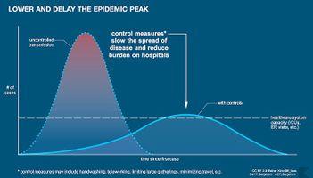 Visualizing a Pandemic